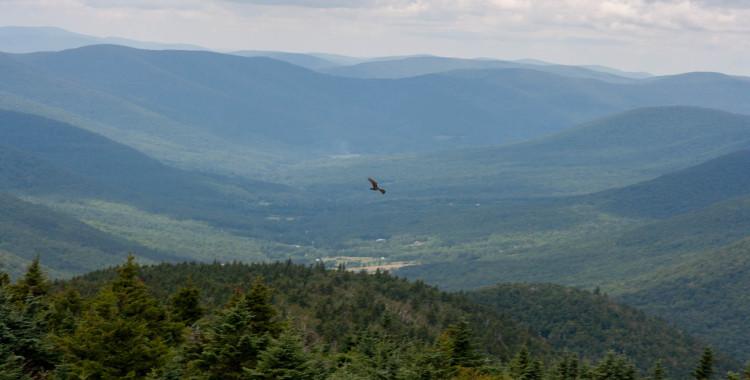 Pohled z Mt. Hunter